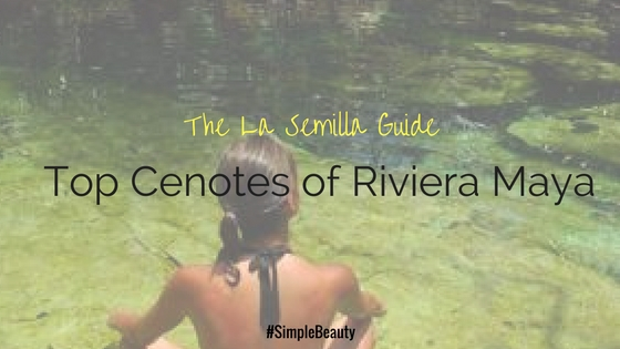 Everything you need to know about the Cenotes of Riviera Maya (2)